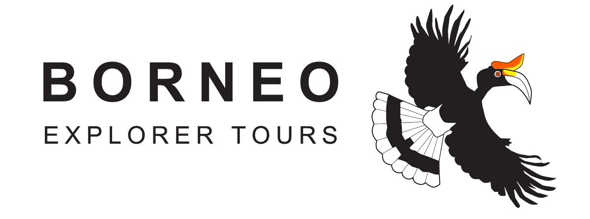 Borneo Explorer Tours