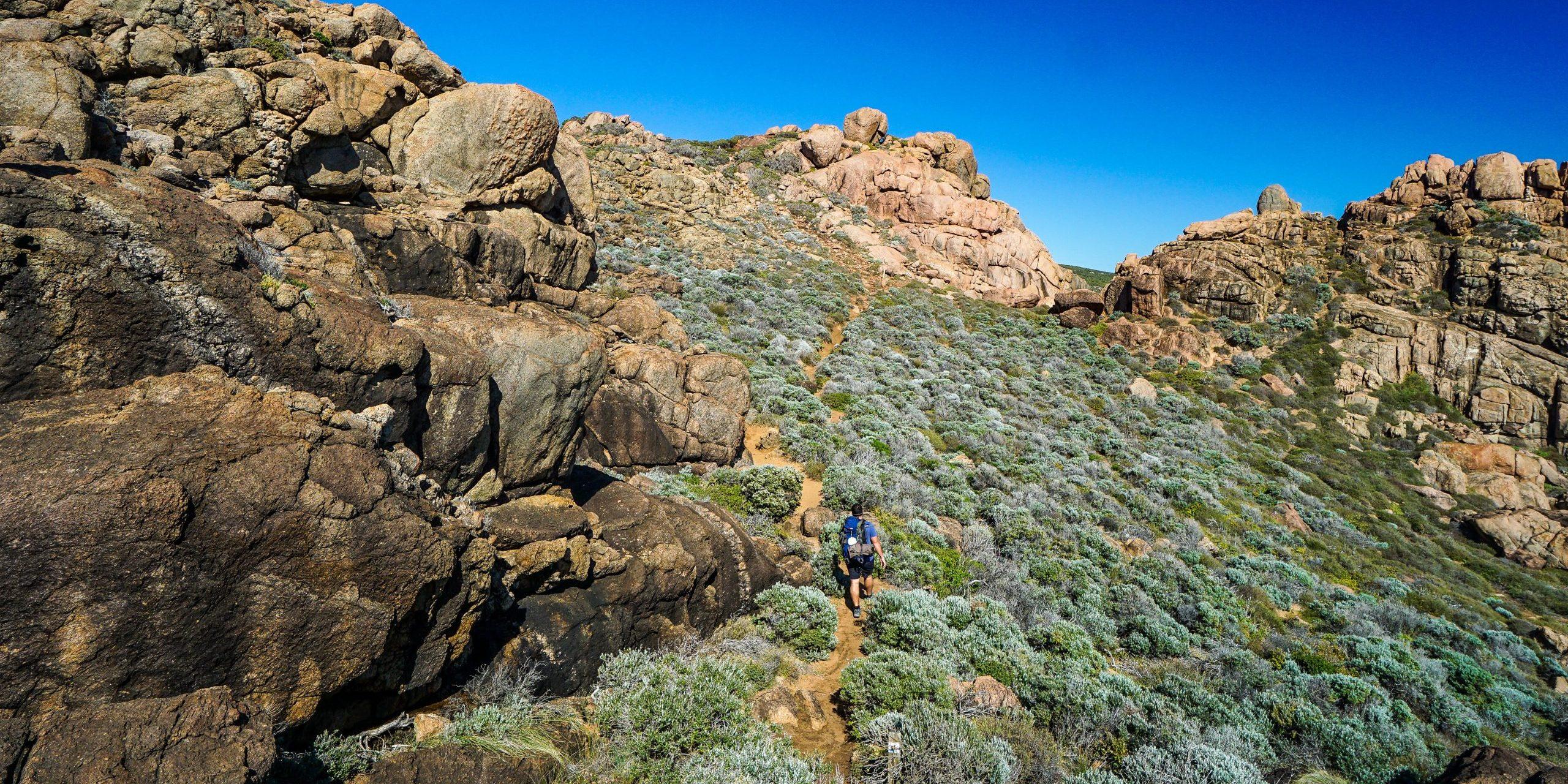 Cape to Cape Track trail run