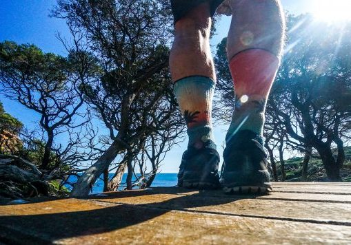 footwear on the Cape to Cape Track